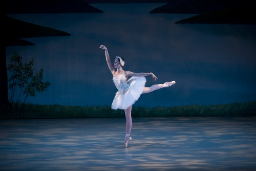 Swan Swan Act II - Grace Phelps.