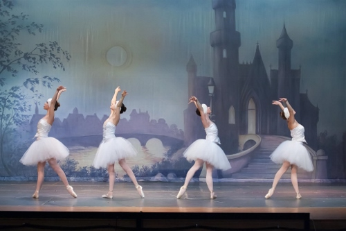 Swan corps dancers in in Olmsted Performing Arts' 'Swan Lake.'