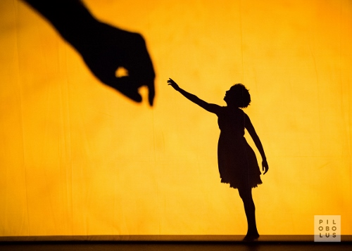 "Pilobolus opens ADF in Cleveland on Saturday, July 29 in ""Shadowland."""