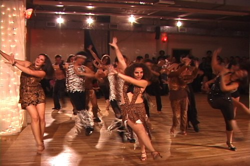 Stepping Out Studios April 25, 2008 Student Showcase Stepping Out Student Int'l. Company - Latin Jungle Fever (Samba/Rumba/Cha Cha) (Directed & Choreographed by Martina Kocichova)