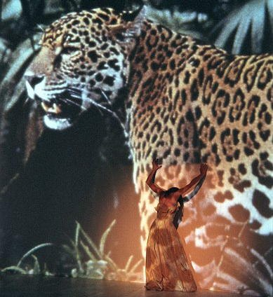 Bausch's AGUA ('Water') against a rainforest image with jaguar