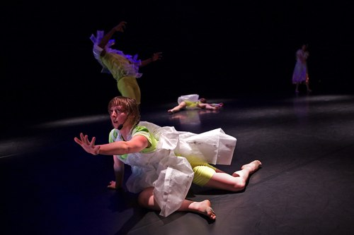 'The Making of Spectacles' by Foofwa d'Imobilité Ruth Childs (dancer)